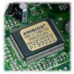 Bios-amibios